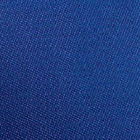 Polyester Blu Ink